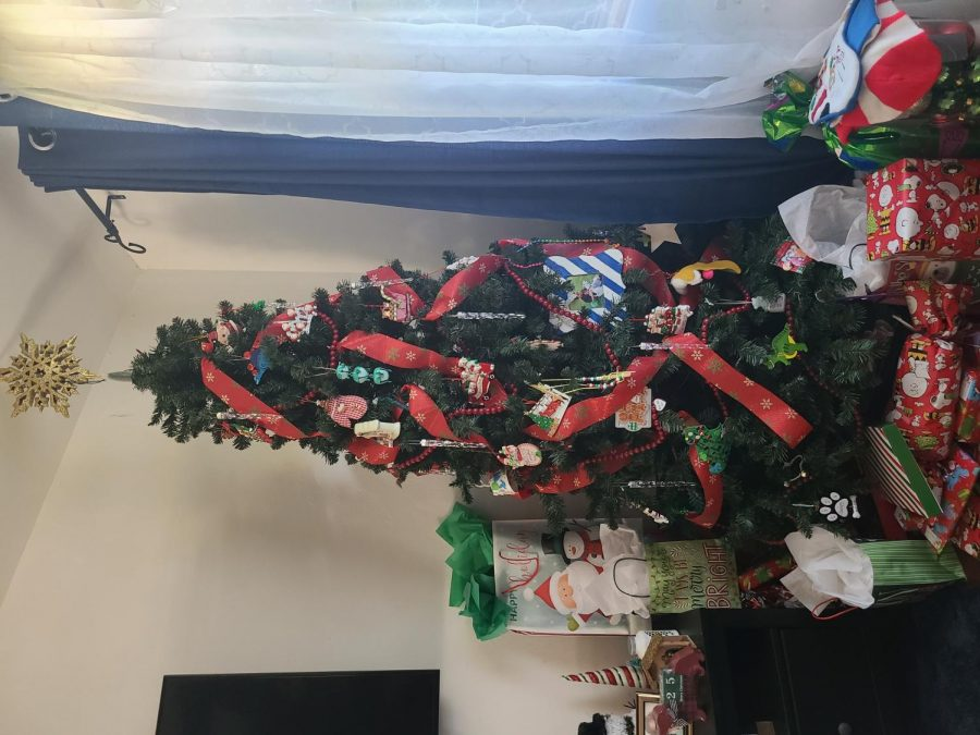 Each year, a large Christmas tree with personalized ornaments representing each family member throughout the years can be found as the holiday centerpiece.