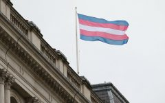 The Transgender Pride Flag flies on the Foreign Office building in London on Transgender Day of Remembrance, 20 November 2017, a moment to remember all those trans people around the world who have lost their lives because of who they are. The FCO is committed to tackling prejudice, violence, and discrimination against LGBT people globally.