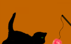 During this time of year, black cats are being bought for the spooky season, but after the holiday is over they are left out into the world, which put them in danger.